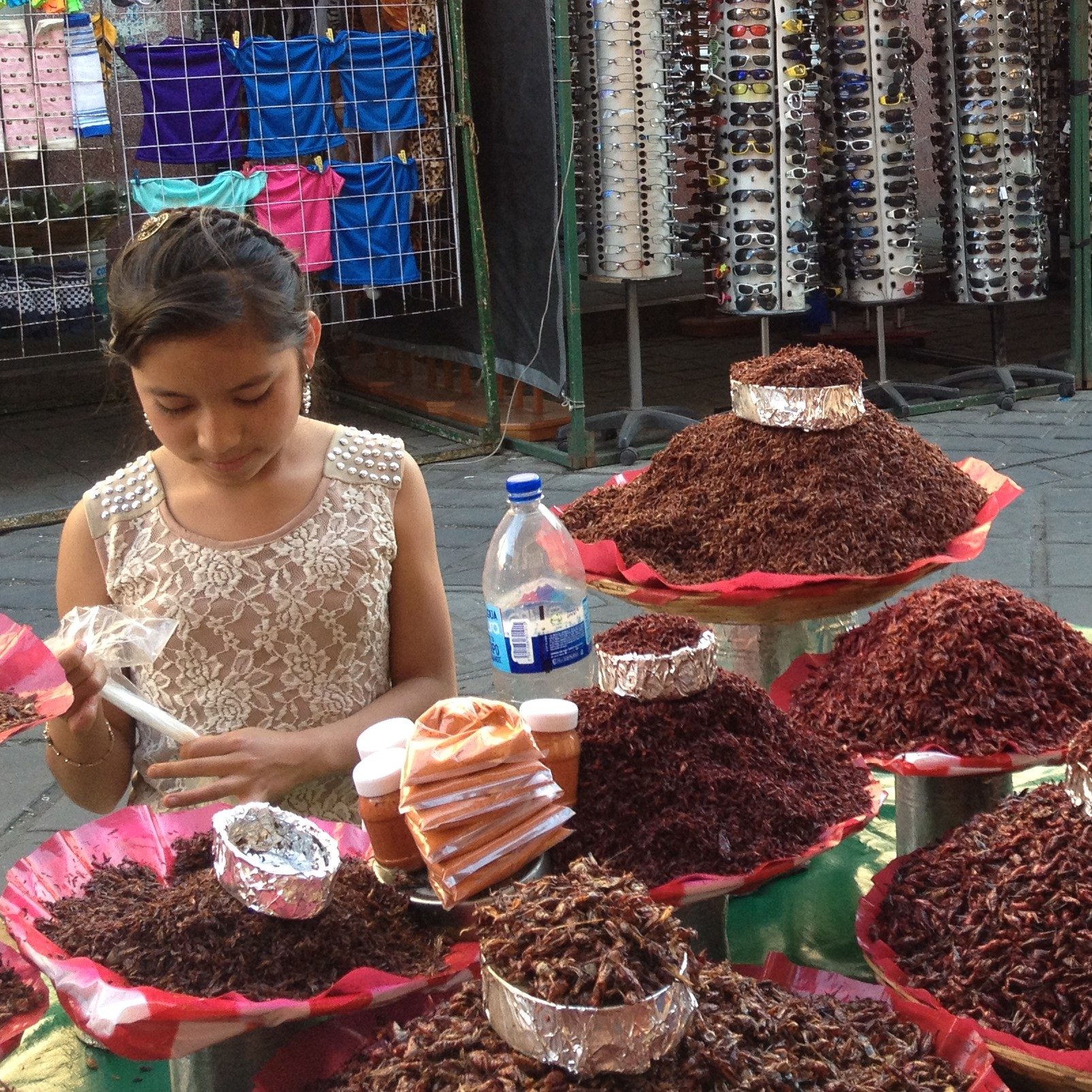 chapulines market